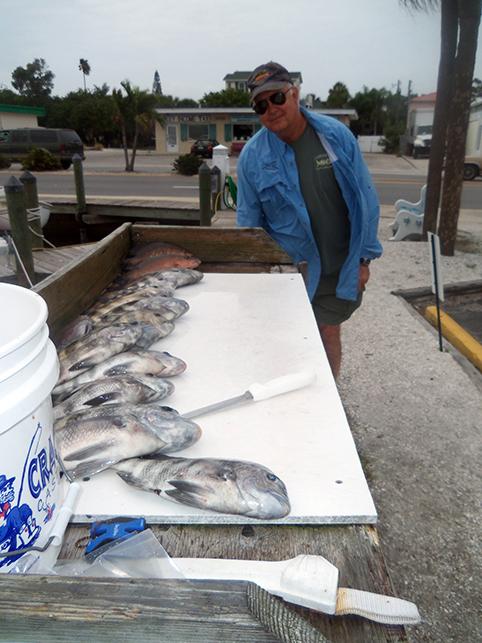 Fishing report 2 2013 southernaire fishing charters for Sheepshead bay fishing report